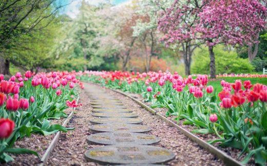Allt för en blomstrande trädgård